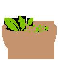 Eroz Juice Bazar | Bowls